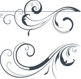 Vector Scroll Set Stock Photography