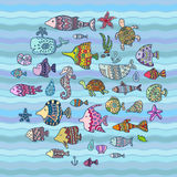 Vector sea animals Stock Images