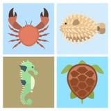 Vector sea animals creatures characters cartoon ocean underwater aquarium life water graphic aquatic tropical beasts Stock Photos