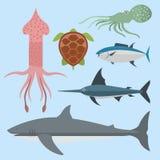 Vector sea animals creatures characters cartoon ocean underwater aquarium life water graphic aquatic tropical beasts Royalty Free Stock Image