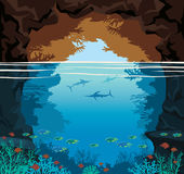Sea cave, coral reef, marlin fish, sea, sky. Royalty Free Stock Image