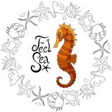 Vector Sea Horse with marine elements and inscription stock illustration