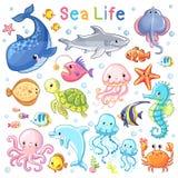 Vector Sea set. Sea animal in children`s style. Cartoon fish Royalty Free Stock Photography