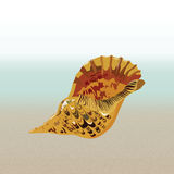 Vector sea shell hand drawn. Vintage Holiday Sea shell on beach background. Scallop shell for Greeting card or travel cards Stock Image
