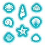 Vector sea shells and starfish icons royalty free illustration