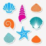 Vector sea shells and starfish labels vector illustration