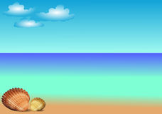 Vector Sea Template With Shells Stock Image