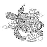 Vector sea turtle Royalty Free Stock Image
