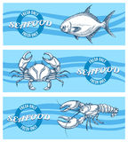 Vector seafood banners set Royalty Free Stock Photos
