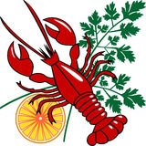 Vector seafood dinner. Red lobster or homar with lemon and parsley, dinner or menu background Royalty Free Stock Photo