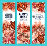 Vector seafood and fish food product banners. Fresh seafood banners set of fish and sea food. Vector fishing big catch of lobster, crab or shrimp prawns, turtle Royalty Free Stock Images