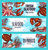 Vector seafood and fish sea product banners. Fresh seafood or fish sea food banners of fishing big catch. Vector turtle, shrimps or prawns and crab or lobster Stock Photography