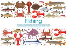 Vector seafood fishing poster of fresh fish. Seafood and fresh fish poster for fishing or fishery products. Vector flat design of fisherman catch squid, flounder Royalty Free Stock Photo