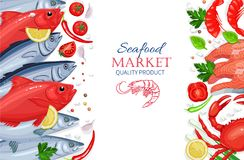 Vector seafood. Healthy food cooking concept. Vector seafood. Tuna, salmon, crab and shrimps with aromatic herbs. Healthy food cooking concept Royalty Free Stock Images