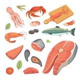 Vector Seafood illustrations set flat fresh fish and crab. Lobster and oyster, shrimp and menu, octopus animal. Vector Seafood illustrations set flat fresh fish Royalty Free Stock Image