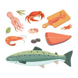 Vector Seafood illustrations set flat fresh fish and crab. Lobster and oyster, shrimp and menu, octopus animal. Vector Seafood illustrations set flat fresh fish Stock Image