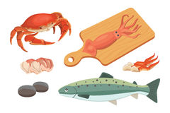 Vector Seafood illustrations set flat fresh fish and crab. Lobster and oyster, shrimp and menu, octopus animal. Seafood platter set design flat fresh fish and Stock Photos