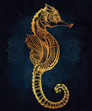 Vector seahorse, line art. Royalty Free Stock Photo
