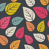 Vector seamless abstract hand-drawn pattern, leaf backdrop, Endl Stock Photo