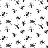 Vector seamless ant colony insect pattern. Black and white scandinavian style fauna design. Hand drawn ink doodle creatures Royalty Free Stock Photo