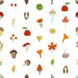 Vector seamless autumn pattern. Cartoon maple seed, apple, tree branch, autumn leaf, mushroom, fir-cone, flower, acorn and chestnut on white background. Bright Royalty Free Stock Image