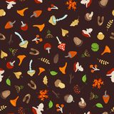 Vector seamless autumn pattern. Tree branches and autumn leaves, edible and poisonous mushrooms, fir-cones and maple seeds, apples and rowan berries, flowers Stock Images