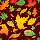 Vector Seamless Background with Autumn Leafs. Royalty Free Stock Photo