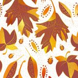 Vector seamless background: autumn Royalty Free Stock Photos