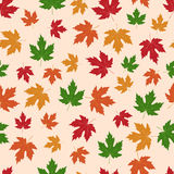 Vector seamless background with autumn maple leaves. Seamless background with autumn maple leaves royalty free illustration