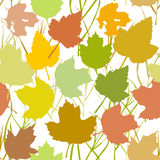 Vector seamless background with autumn maple leaves  for fashion textile or web background. green yellow orange beige silhouette o Stock Photography