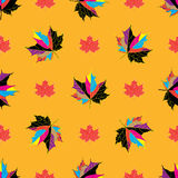 Vector seamless background of autumnal leaves. Royalty Free Stock Photos