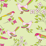Vector Seamless background with birds and flowers Stock Image