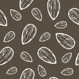 Vector seamless background with bluish cactus. Vector seamless background with almonds in white on background brown. Ready for printing on textile and other stock illustration