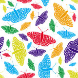 Vector seamless background. Butterfly. Royalty Free Stock Images