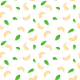 Vector seamless background of a cashew nut. Shelled walnuts whole cashews half and leaves on  white .  nuts elements Royalty Free Stock Photo
