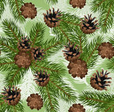 Vector seamless background with fir and cones. Vector illustration of seamless background with fir tree branches and cones on a white background Stock Photo