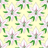 Vector seamless background with flower Lily Stock Images