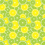 Vector seamless background of lemon and lime slices. Stock Images