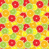 Vector seamless background of lemon, orange, lime, grapefruit slices. Stock Photography