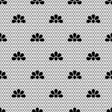 Seamless background pattern lace, black and white color. Vector seamless background pattern lace, black and white color Royalty Free Stock Images