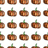 Vector seamless background with pumpkin. Stock Image