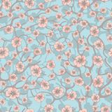 Vector seamless background with sakura blossoms and folliage. Black white eps outlined illustration. Royalty Free Stock Images