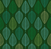 Vector seamless background with spring colored leaves. Seamless background with spring colored leaves Stock Images