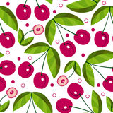 Vector seamless background with sweet cherries Stock Image