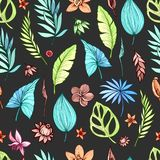 Vector seamless beautiful artistic dark tropical pattern with banana, Syngonium and Dracaena leaf, summer beach fun. Colorful original stylish floral Stock Images