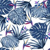 Vector seamless beautiful artistic monotone blue tropical leave Royalty Free Stock Photo