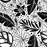 Vector seamless beautiful artistic tropical pattern with banana, Syngonium and Dracaena leaf, summer beach fun, black Stock Images