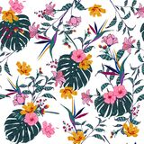 Vector seamless beautiful artistic tropical pattern with exotic. Forest. Colorful original stylish floral background print, bright rainbow flower on white Royalty Free Stock Images