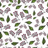 Vector seamless berry pattern Stock Images