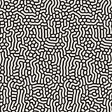 Vector Seamless Black and White Organic Lines Pattern Stock Image